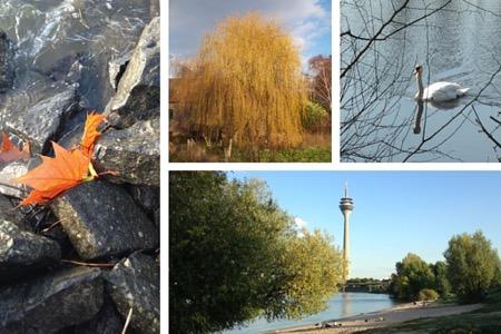 Am Niederrhein. Fotos: Heide Liebmann